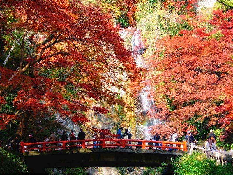 Công viên Mino mùa lá đỏ